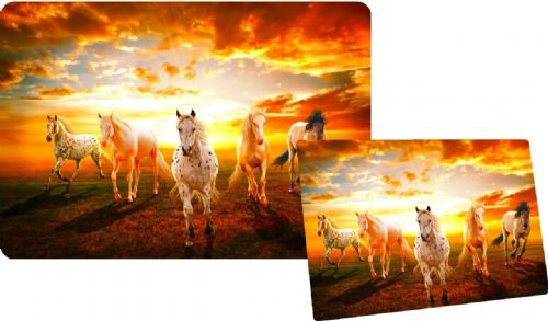 WILD HORSES Laptop Skins Vinyl Stickers Custom Designs